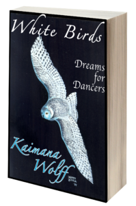 White Birds 3D book cover